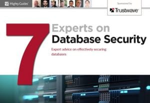 E-Book: 7 Experts on Database Security