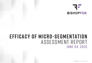 Efficacy of Micro-Segmentation: Assessment Report