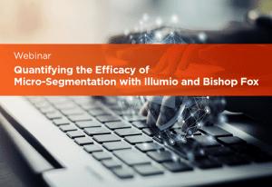 Quantifying the Efficacy of Micro-Segmentation