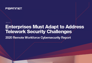 2020 Remote Workforce Cybersecurity Report