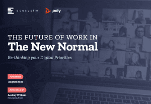 The Future of Work in the New Normal