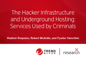 The Hacker Infrastructure and Underground Hosting: Services Used by Criminals